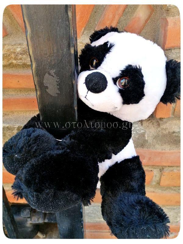 panda_1512-008